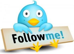 Grow a Powerful Following on Twitter 4 Ways