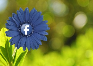 The Facebook Post Run Down, the 5 Most Common Mistakes