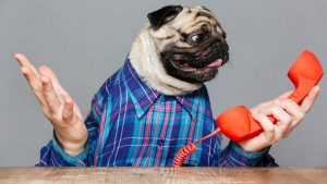 Customer Complaints Can Actually Be a Good Thing. Here's Why…